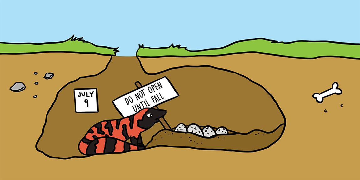 The Gila Monster Egg Puzzle Frontiers For Young Minds