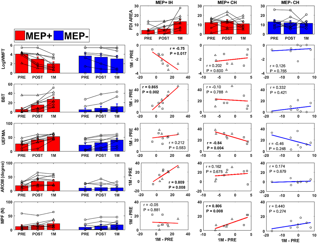 Frontiers | The Association Between Reorganization of Bilateral M1