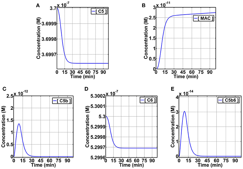 Frontiers Immunophysical Evaluation Of The Initiating Step