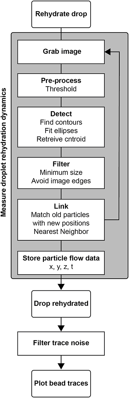Frontiers | Stigmatic Microscopy Enables Low-Cost, 3D, Microscale