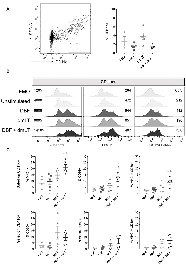 Frontiers | Vaccination With Mouse Dendritic Cells Loaded