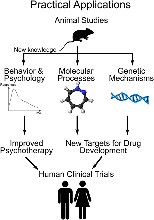 Figure 3 - Practical applications of addiction research on animals.