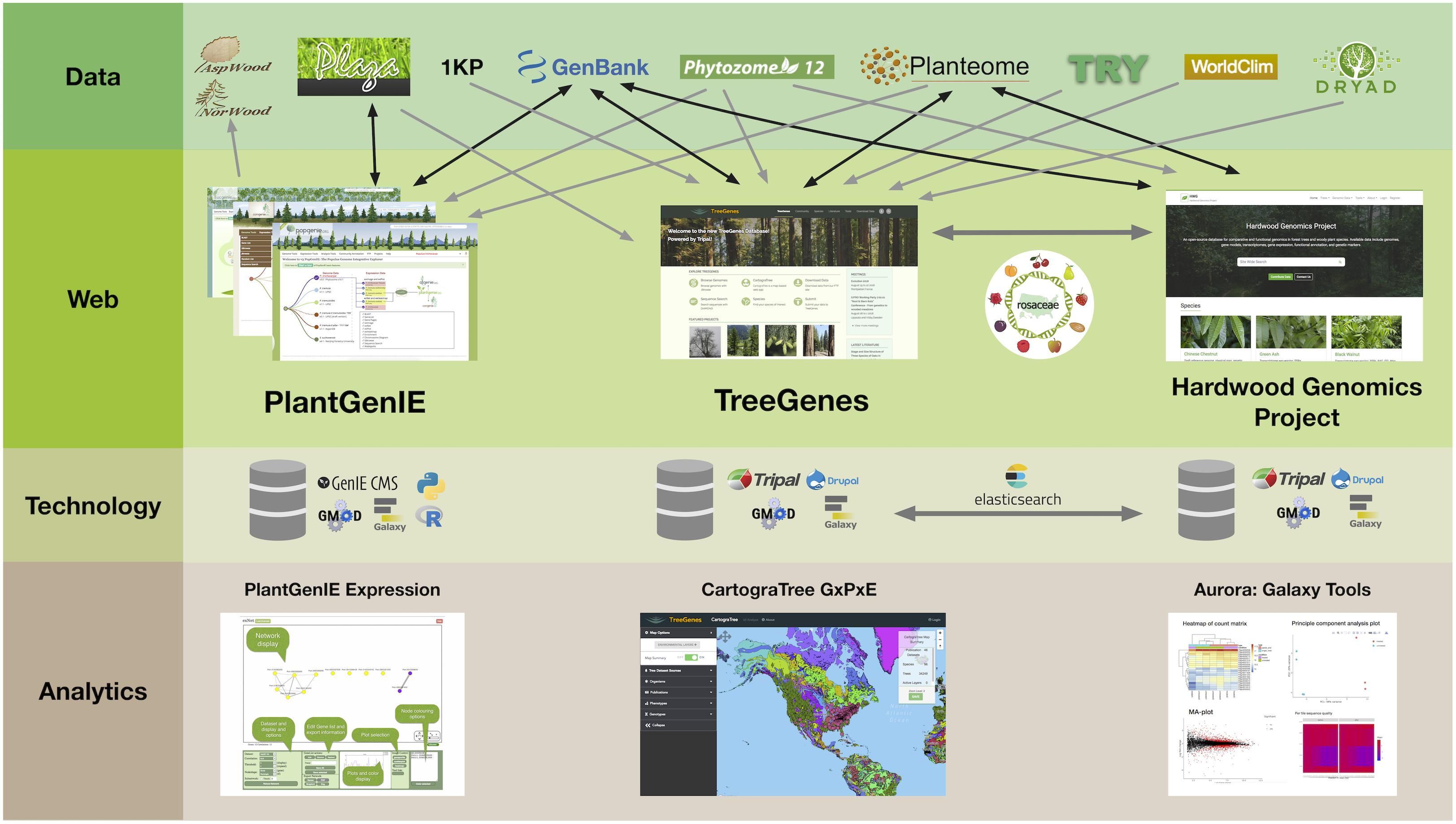 Frontiers | Cyberinfrastructure to Improve Forest Health and