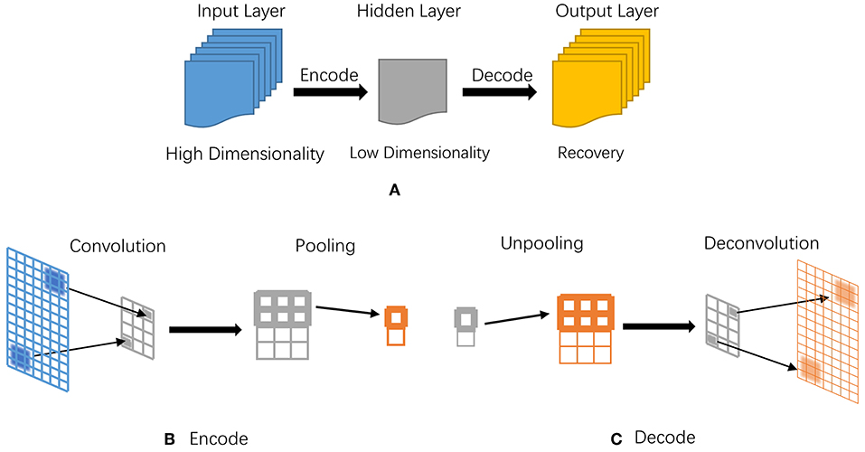 Frontiers | Recent Advances of Deep Learning in Bioinformatics and
