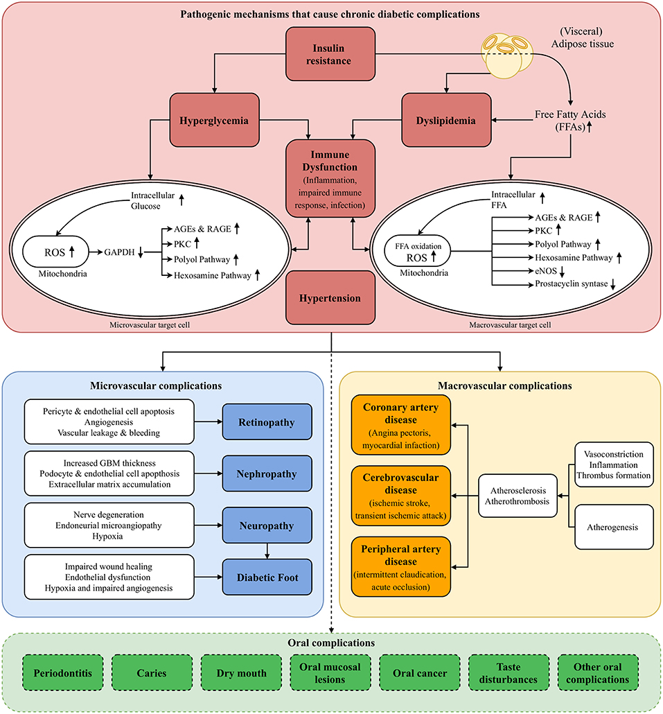Frontiers | Evaluating All Potential Oral Complications of