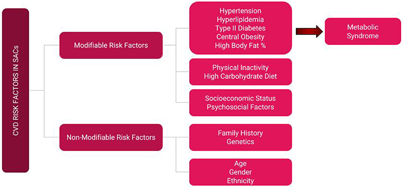Frontiers | The Role of Physical Activity Prescription in