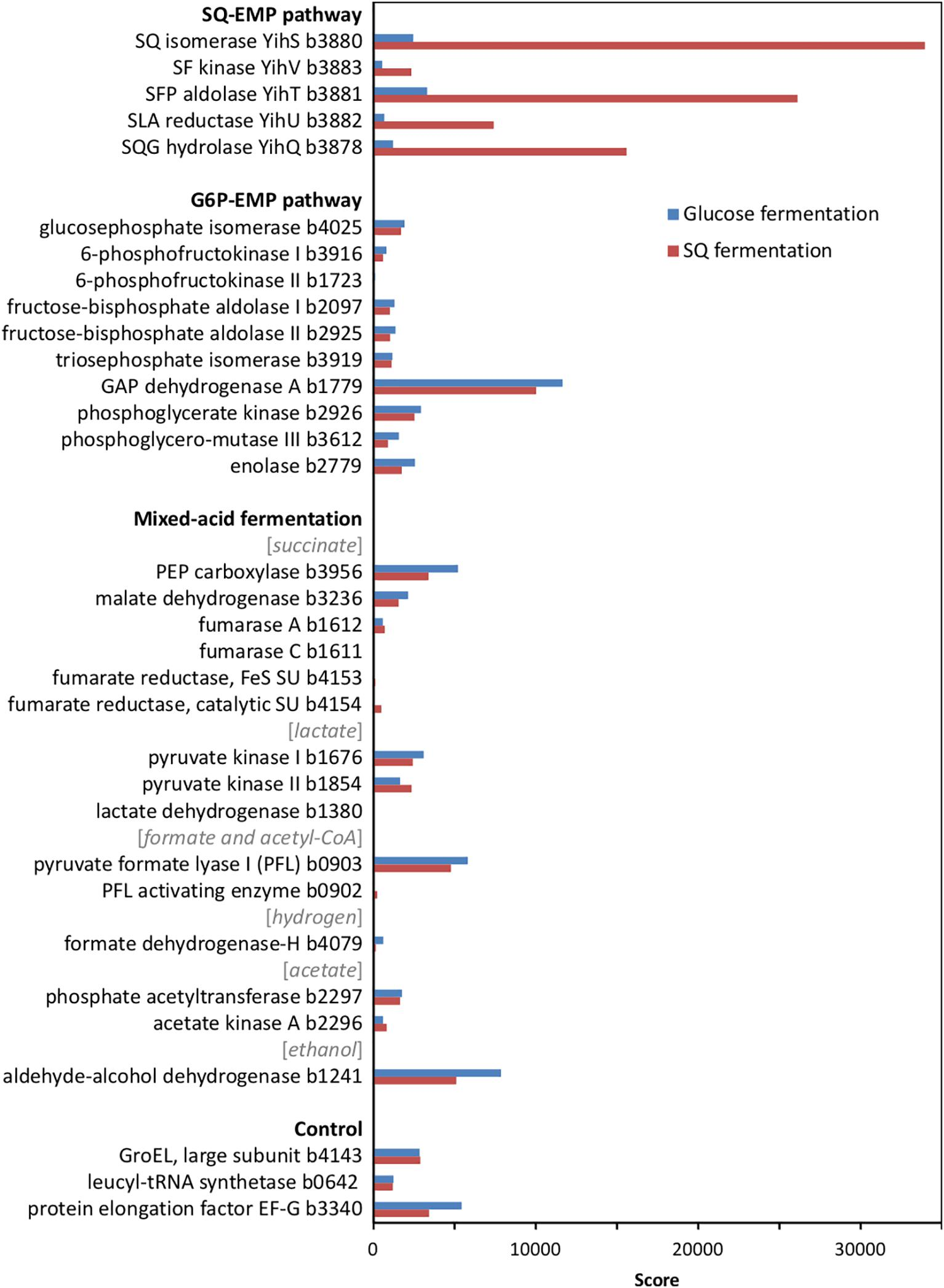Frontiers | Anaerobic Degradation of the Plant Sugar Sulfoquinovose