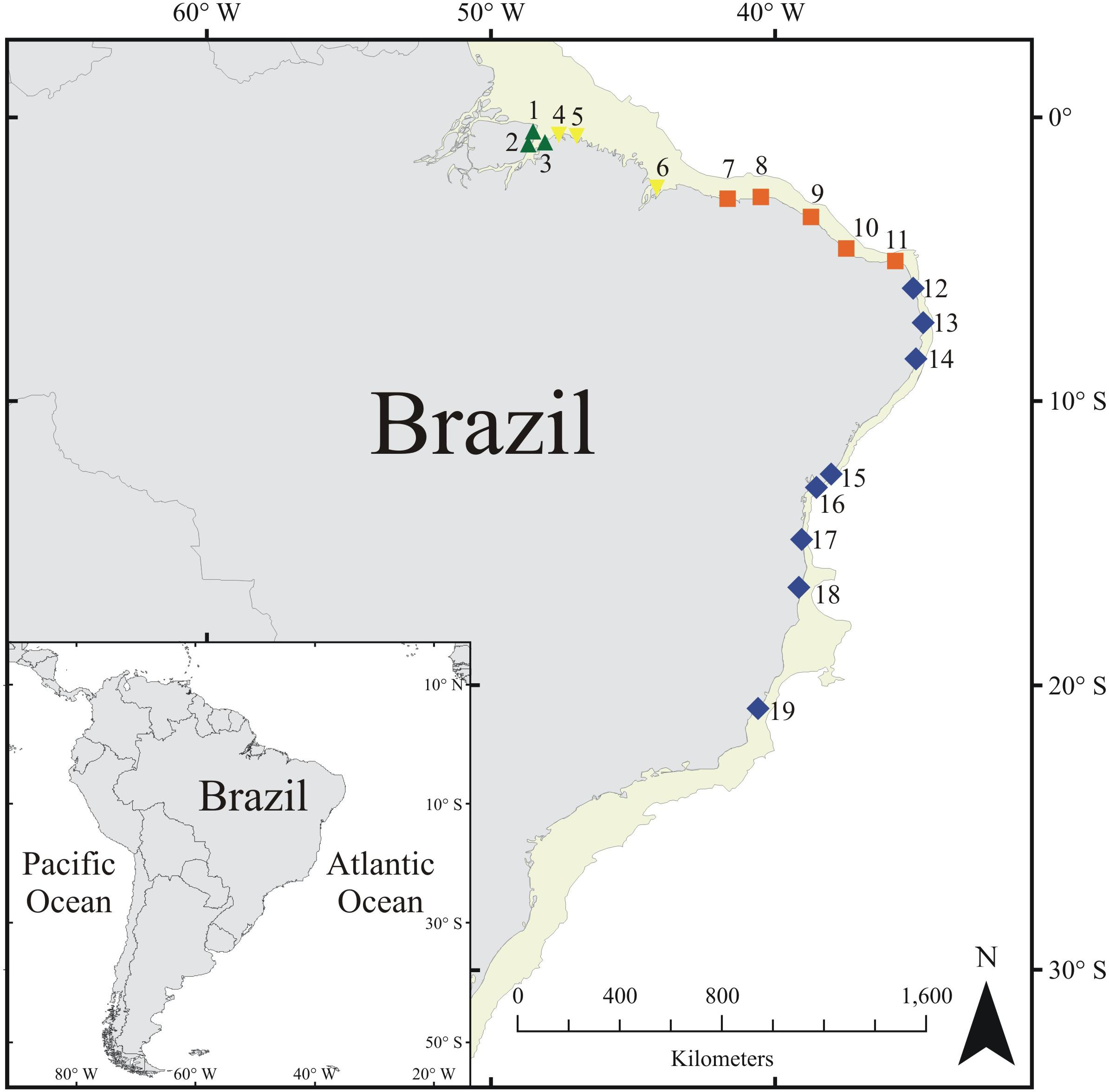 Frontiers | Intertidal Biogeographic Subprovinces: Local and