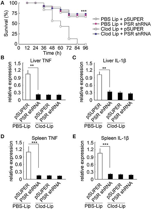 Frontiers A Novel Lipopolysaccharide Recognition Mechanism
