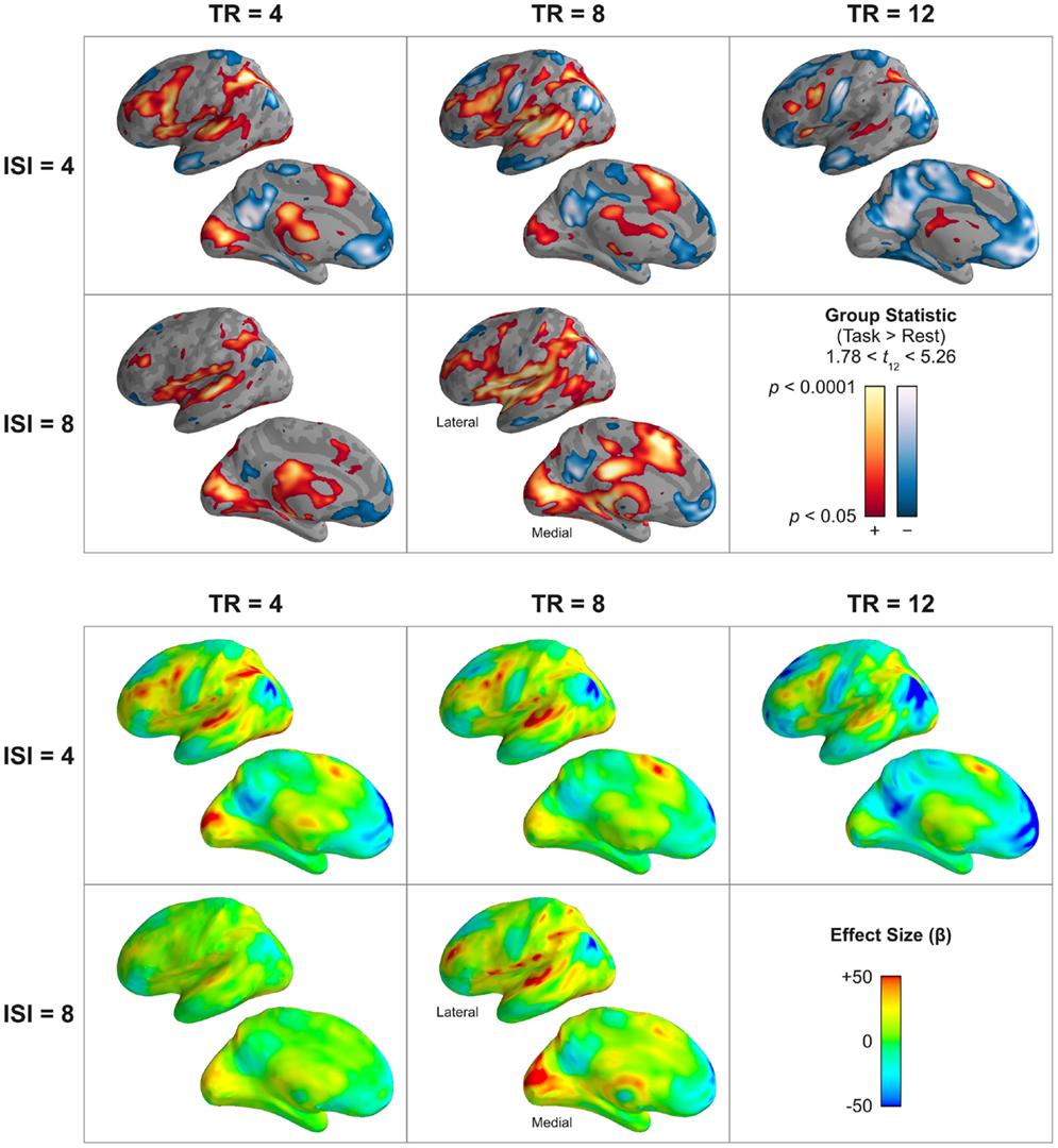 experimental psychology stroop effect essay