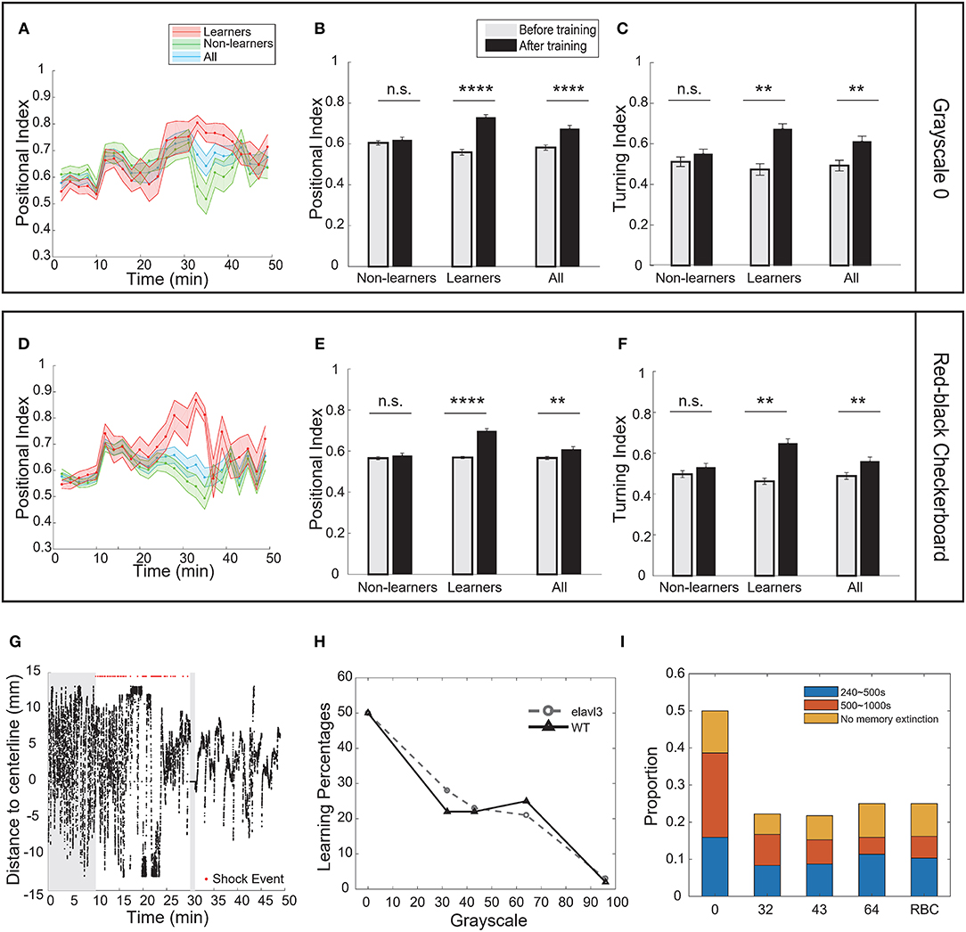 Frontiers | Visual Contrast Modulates Operant Learning Responses in