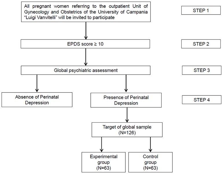 Frontiers | Psychoeducational Intervention for Perinatal