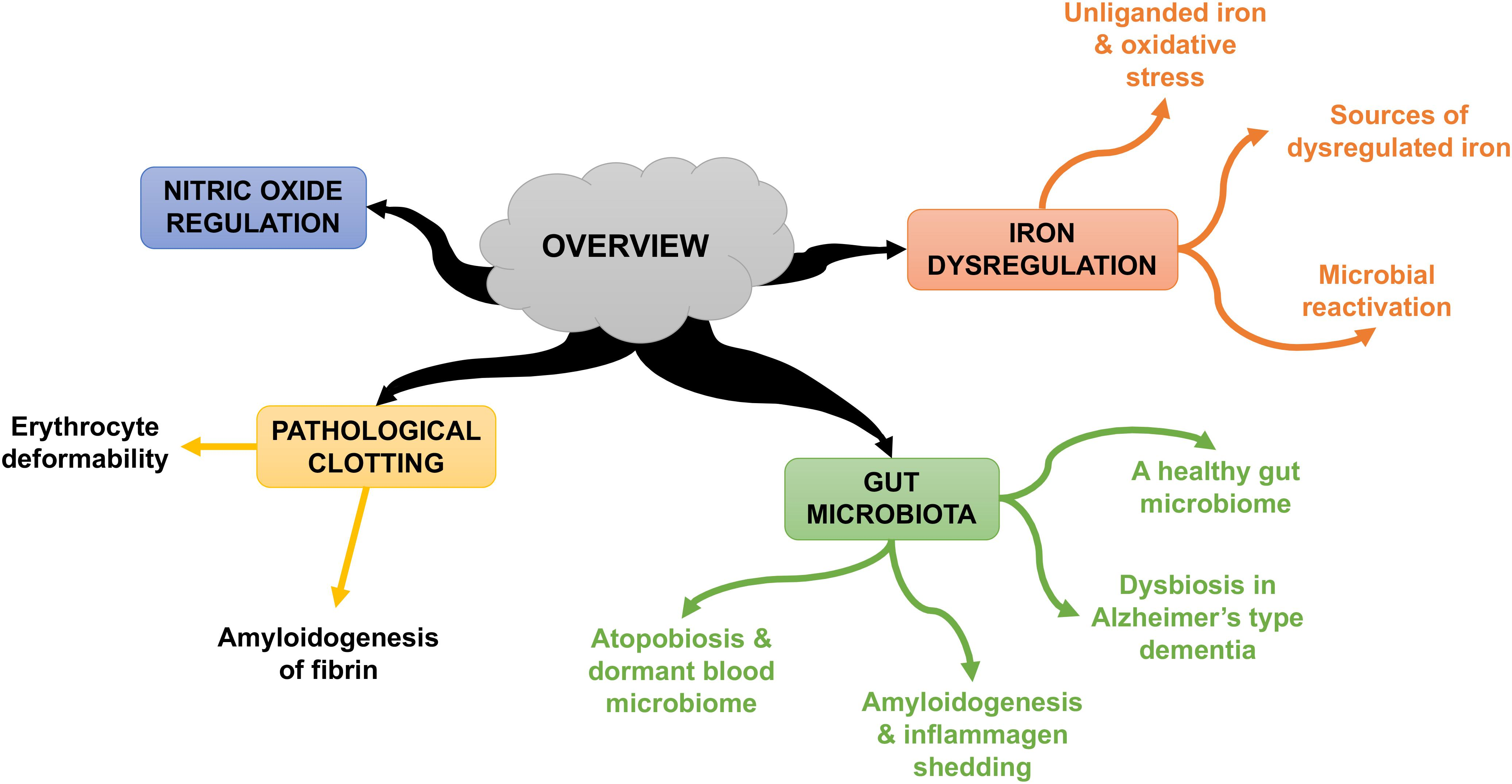 Frontiers | Iron Dysregulation and Dormant Microbes as Causative