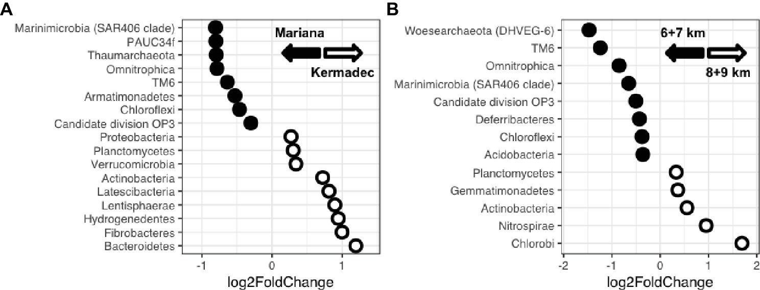 Frontiers | Microbial Community Diversity Within Sediments