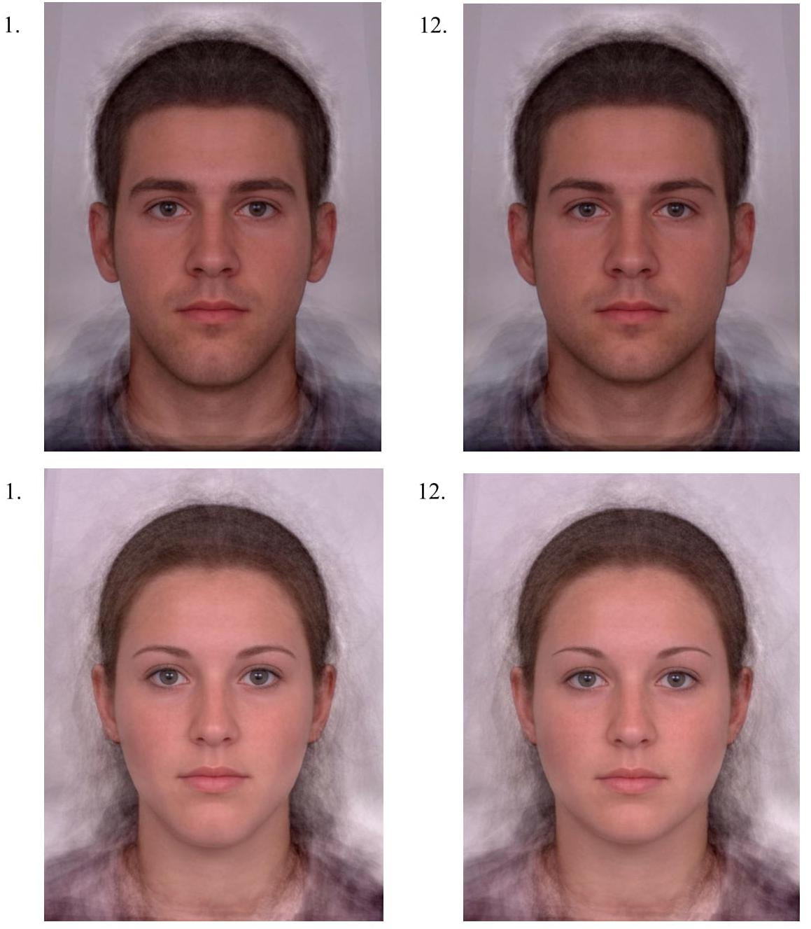 Dimorphism in facial