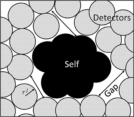 Frontiers | Artificial Immune System–Negative Selection