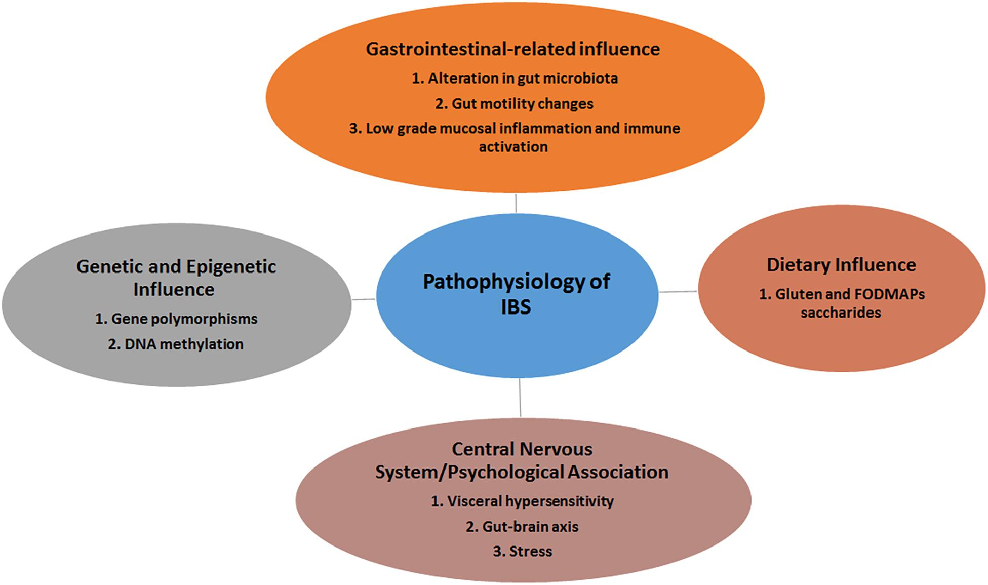 Frontiers | The Microbiome and Irritable Bowel Syndrome – A