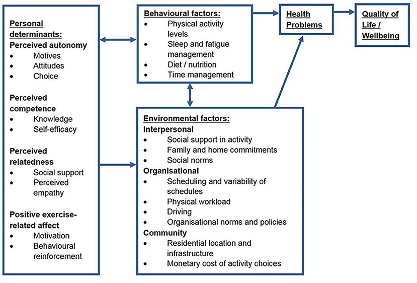 Frontiers | Development of a Self-Determination Theory-Based