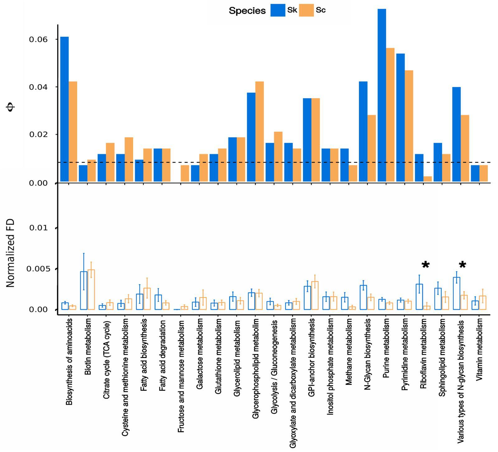 Frontiers   Comparative Genomics Between Saccharomyces