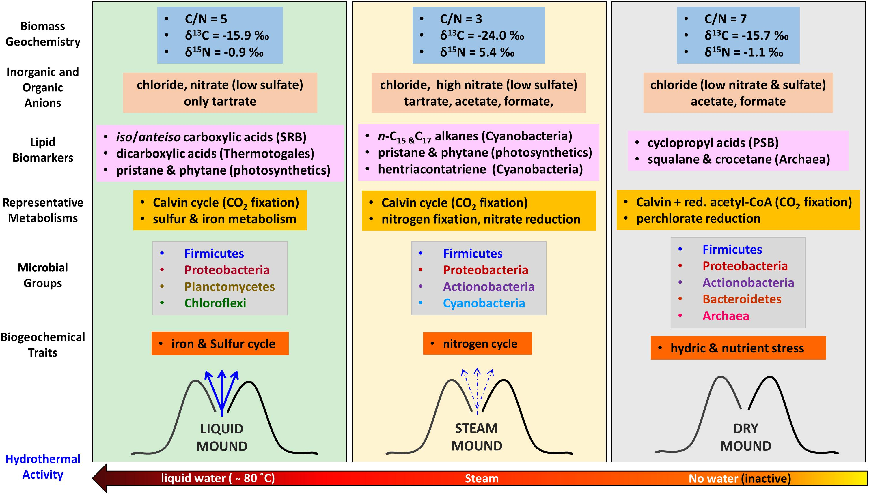 Frontiers | Microbial Biomarker Transition in High-Altitude Sinter