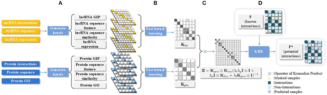 Frontiers | Multivariate Information Fusion With Fast Kernel