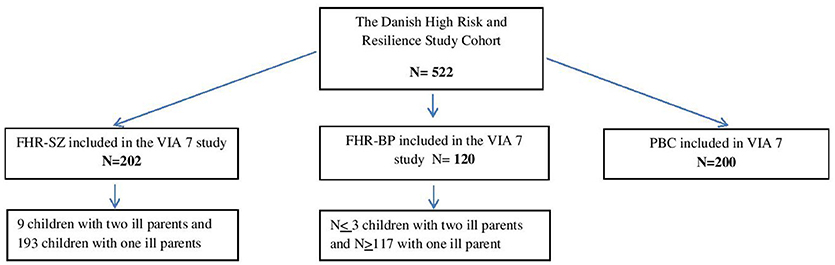 Frontiers | The Danish High Risk and Resilience Study—VIA 11