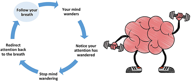 Figure 2 - The process of controlling attention during mindfulness practice.