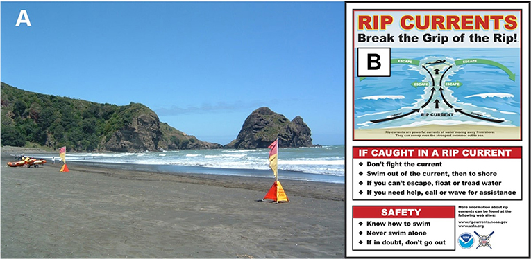 Figure 2 - (A) The best way to avoid rip currents is to swim in an area with lifeguards, such as between the pair of red and yellow flags on this New Zealand beach (photo: Jodie Wilson).