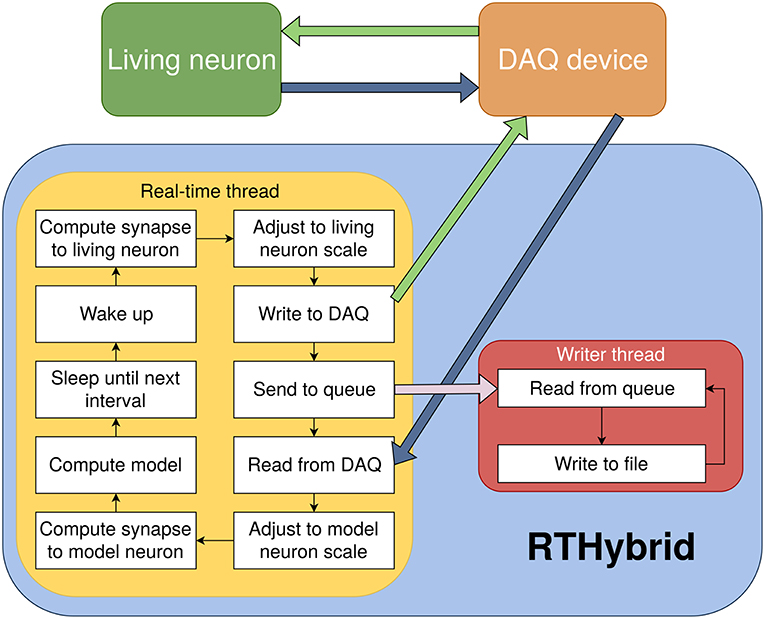 Frontiers | RTHybrid: A Standardized and Open-Source Real-Time