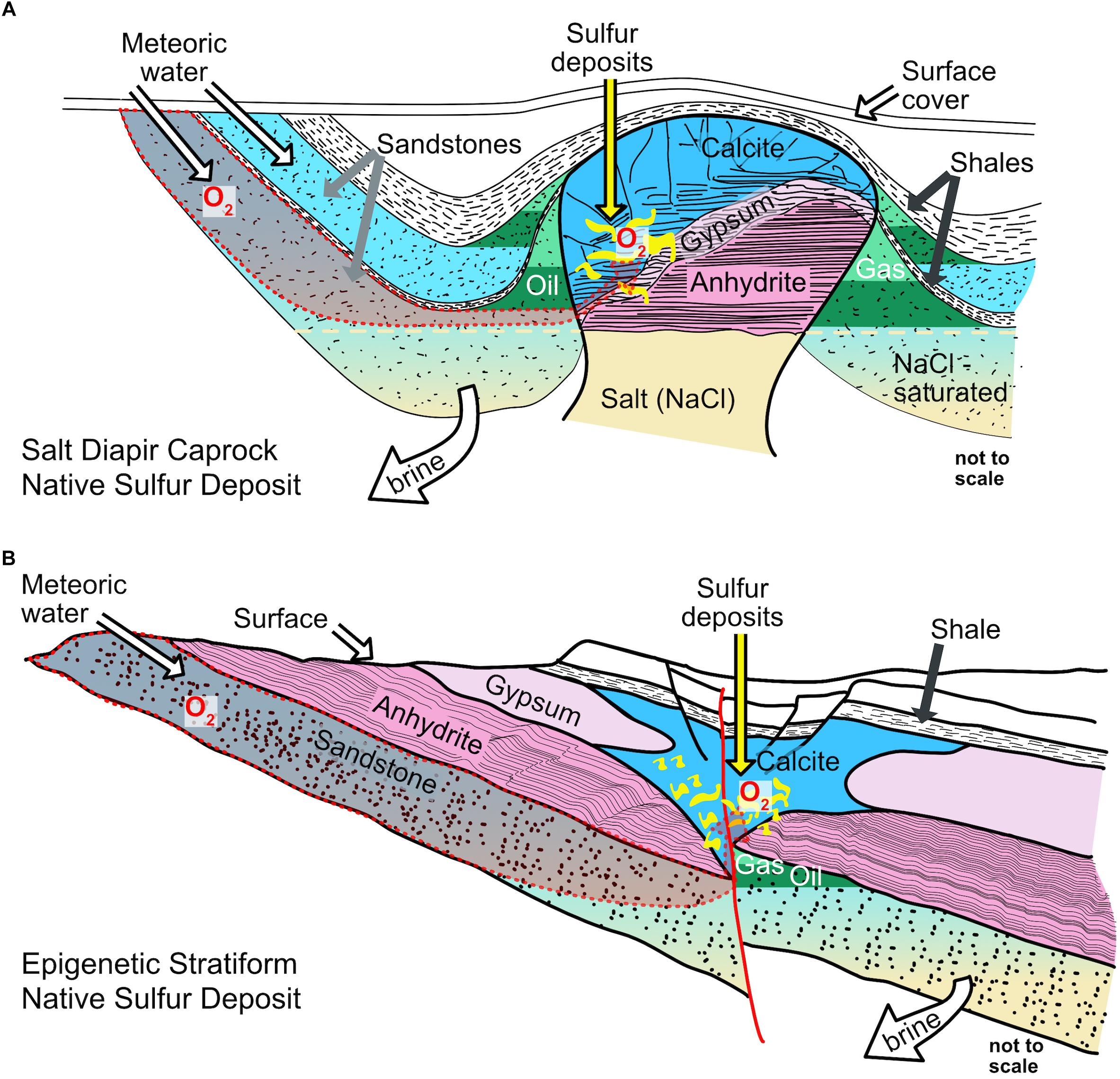 Frontiers | Formation of Large Native Sulfur Deposits Does Not