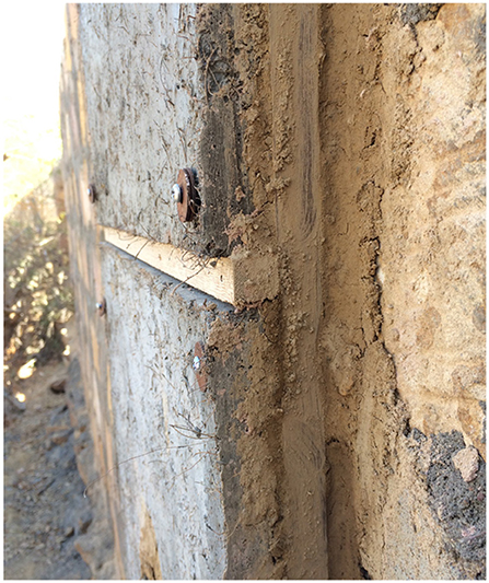 Frontiers | Coconut Fiber Cement Panels as Wall Insulation