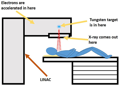 Figure 1 - Inside a medical linear accelerator (LINAC), electrons are accelerated to extremely high speeds and slammed into a tungsten target.