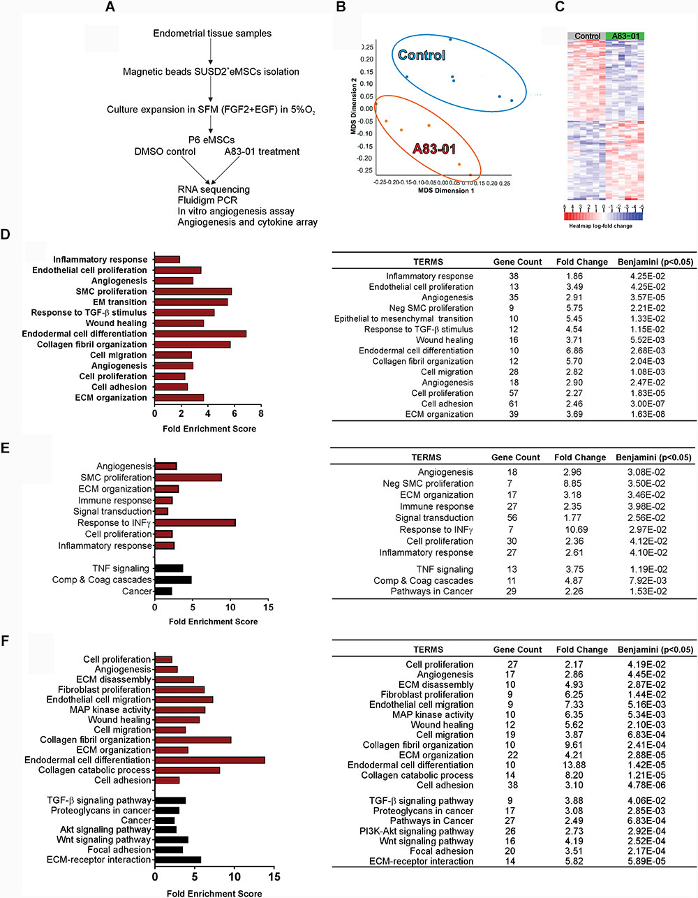 Frontiers | The Transcriptome of Human Endometrial