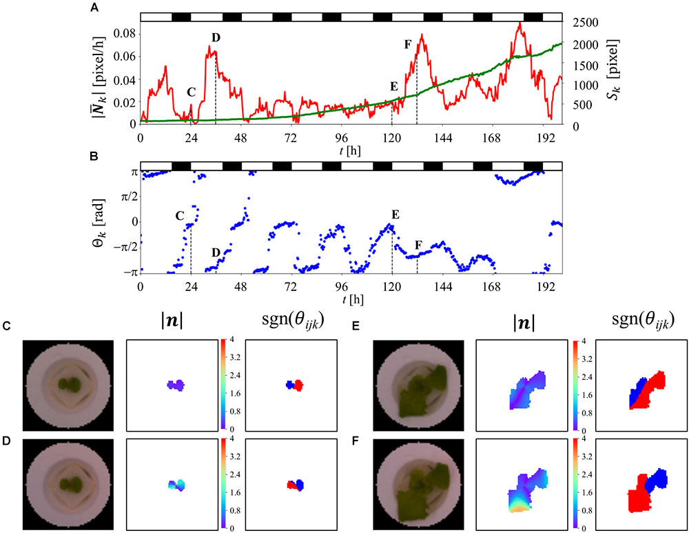 Frontiers | Leaf-Movement-Based Growth Prediction Model