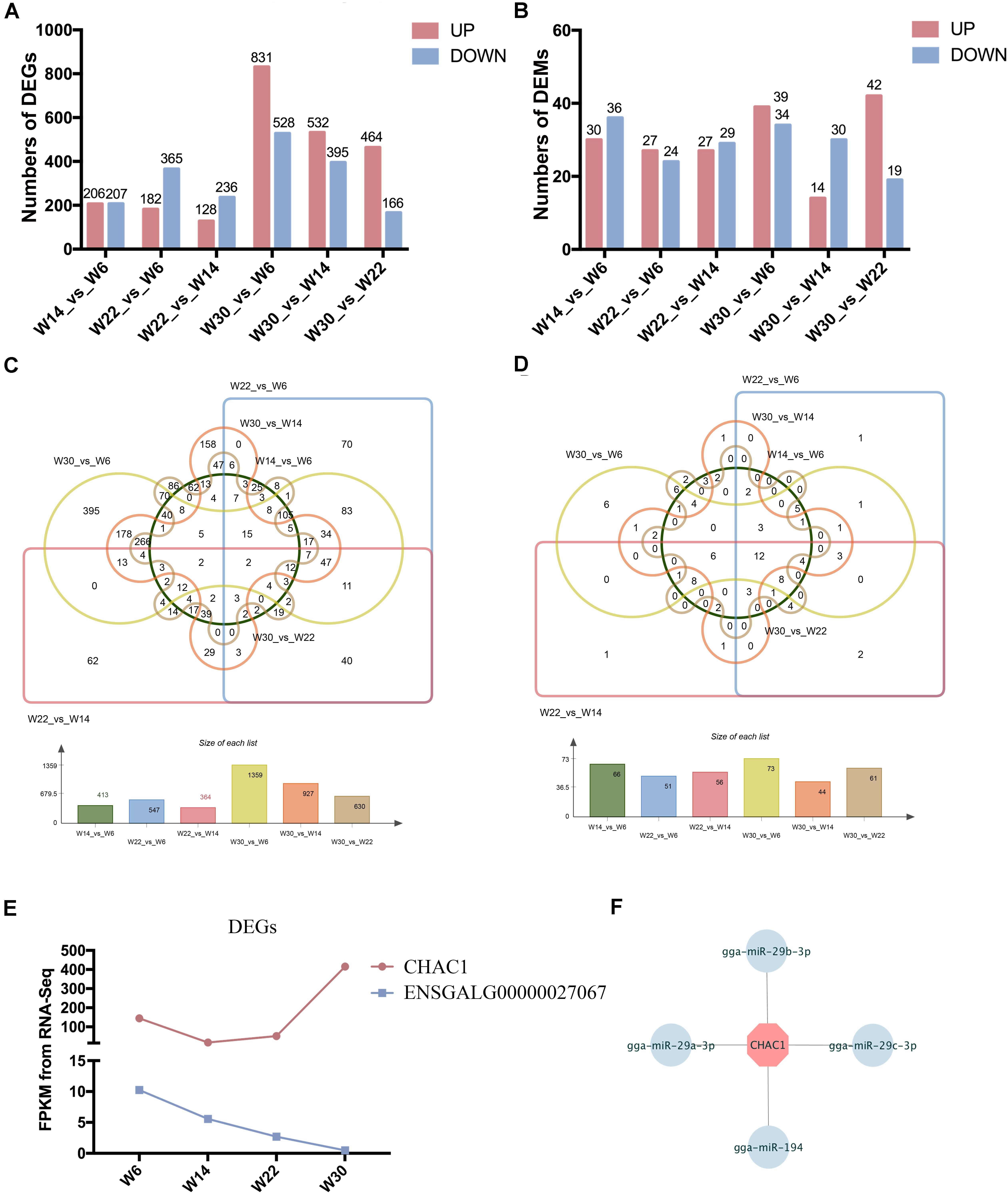 Frontiers   Analyses of MicroRNA and mRNA Expression Profiles Reveal