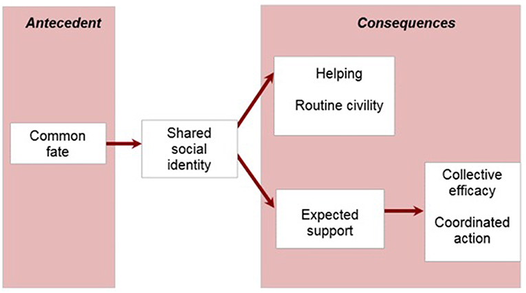 Frontiers | Facilitating Collective Psychosocial Resilience in the