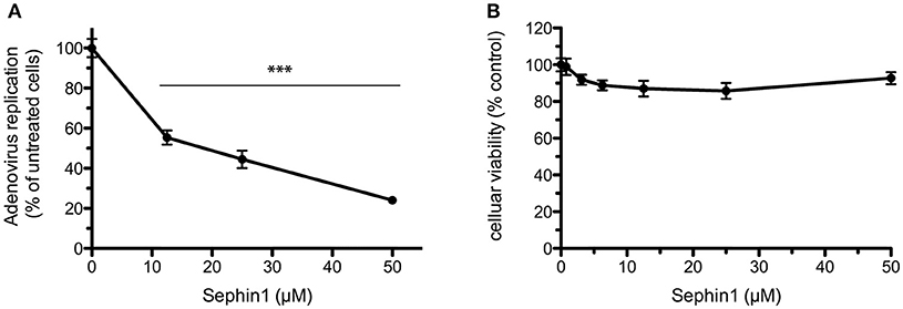Frontiers | Evaluation of the Antiviral Activity of Sephin1