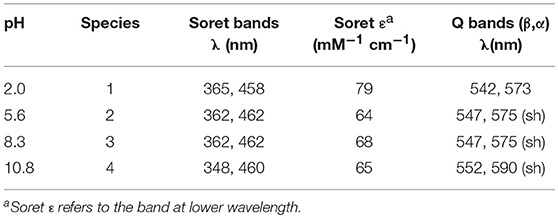 Frontiers   Mn-Mimochrome VI*a: An Artificial Metalloenzyme