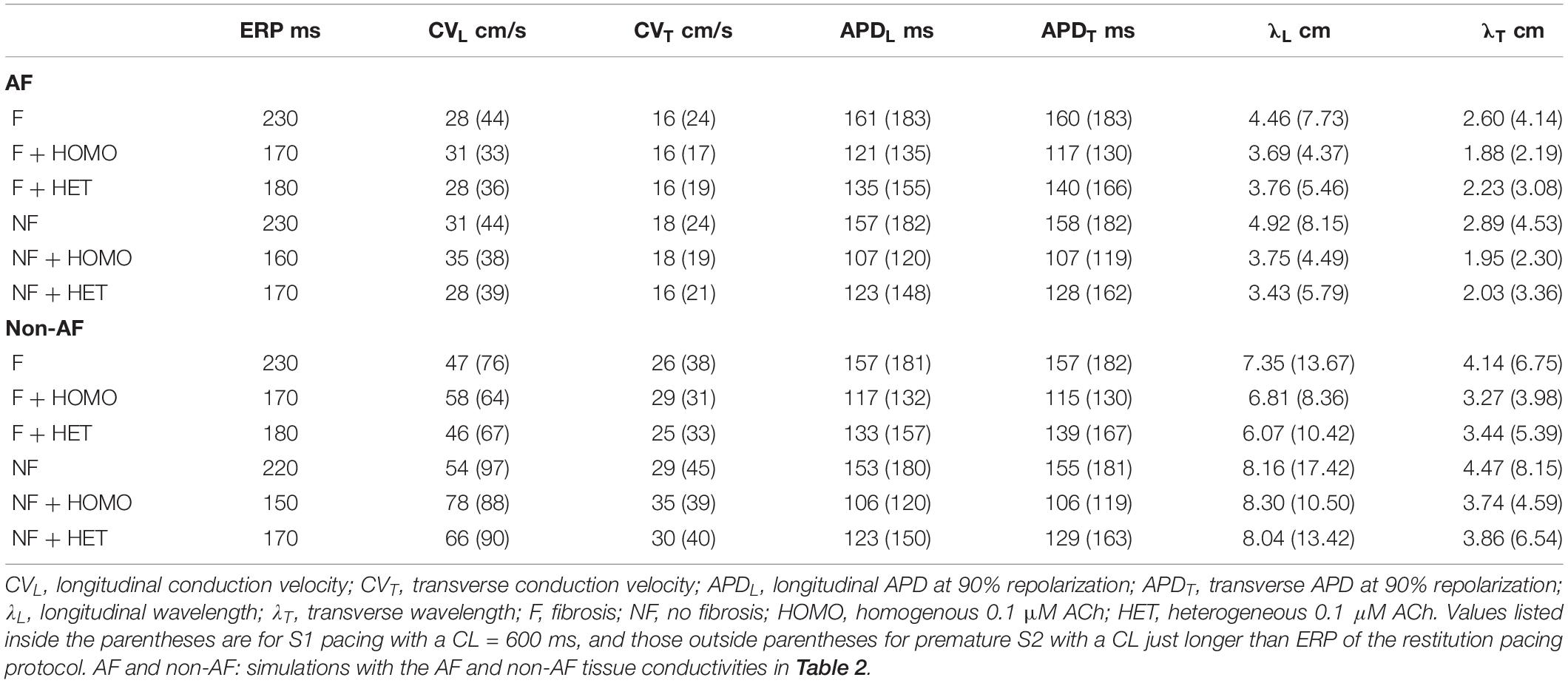 Frontiers | Acetylcholine Delays Atrial Activation to