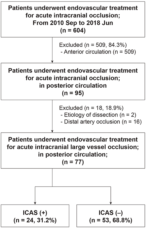 Frontiers | Endovascular and Clinical Outcomes of