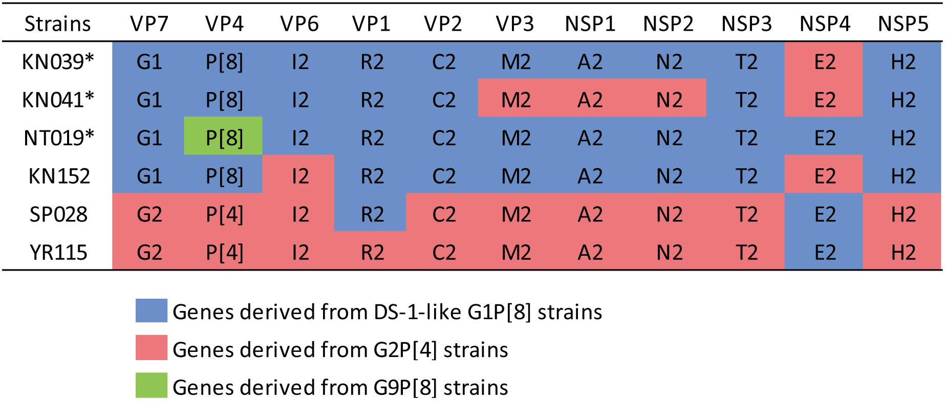 Frontiers   Study of Complete Genome Sequences of Rotavirus