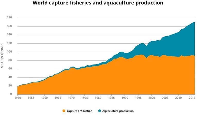 Frontiers | The Challenge of Sustaining Ocean Observations