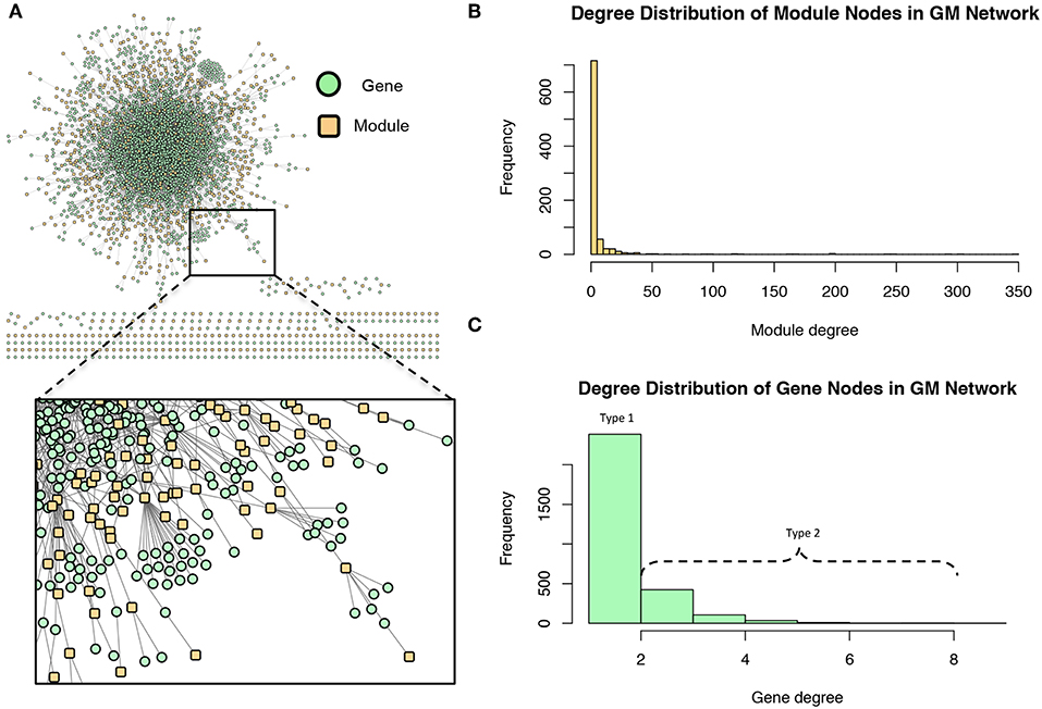 Unraveling Gene Environment Interaction >> Frontiers Multi Phenotype Association Decomposition Unraveling