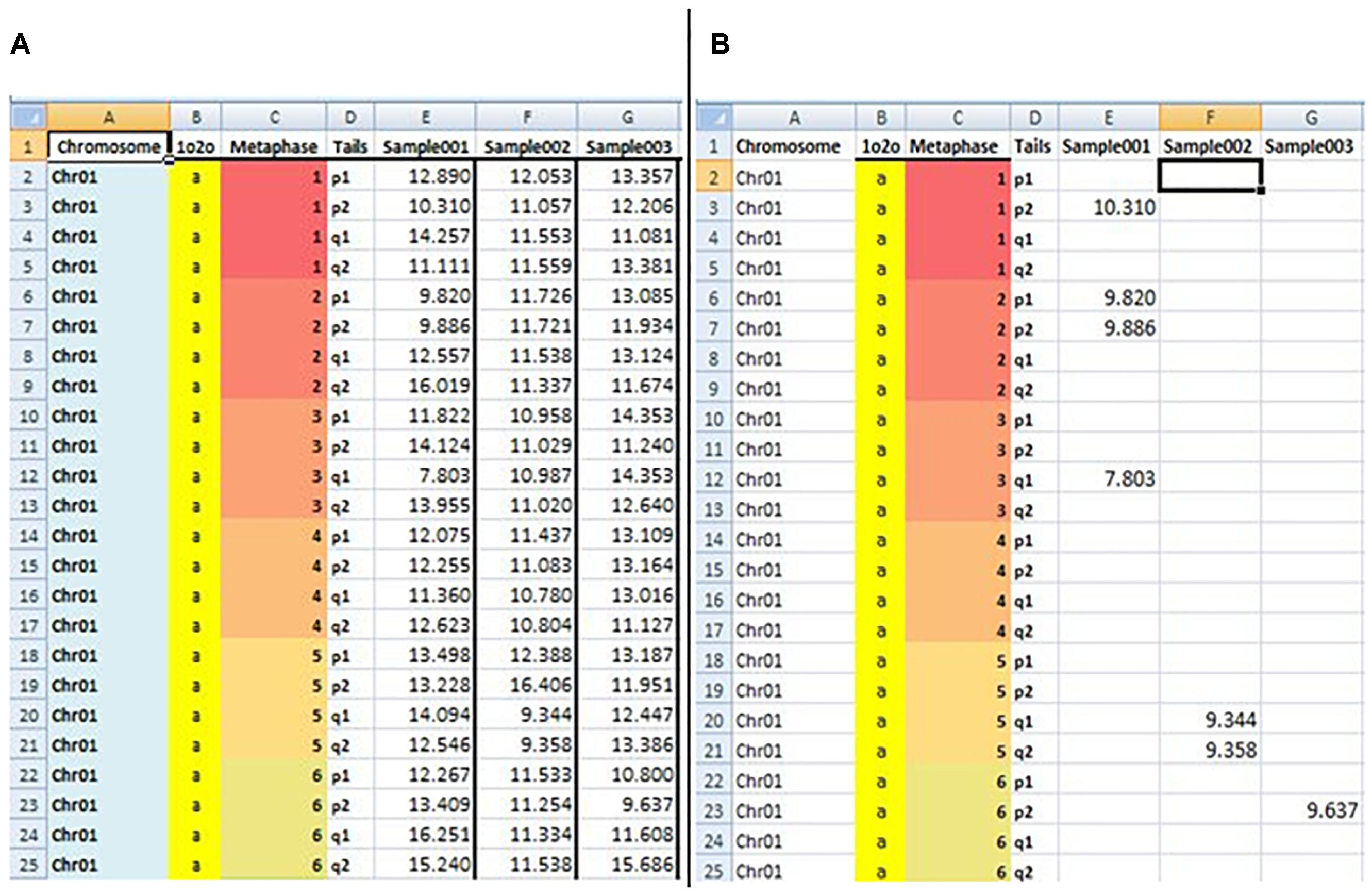 Frontiers | Developing BIOTEL: A Semi-Automated Spreadsheet for