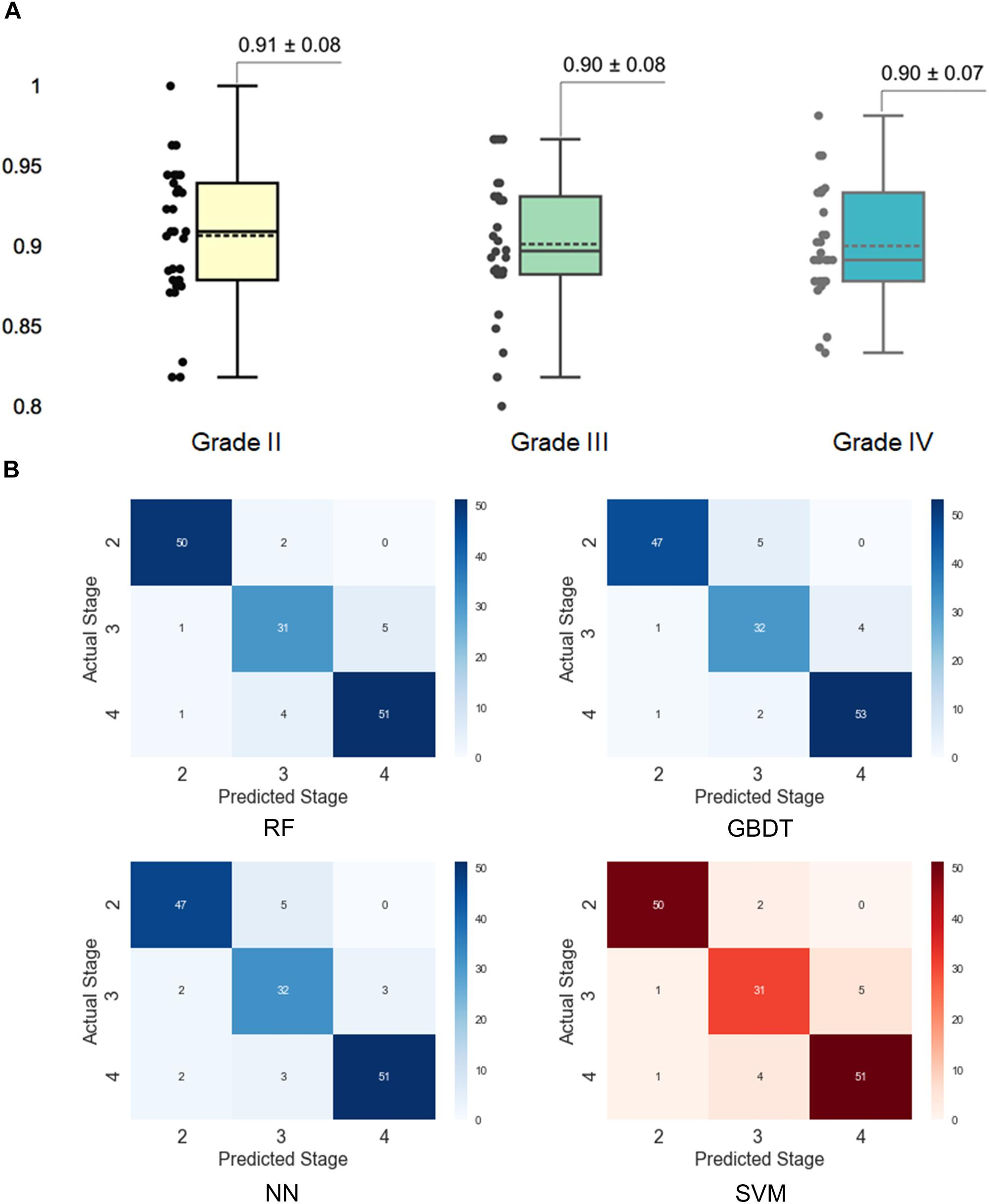 Frontiers | Machine Learning Models for Multiparametric