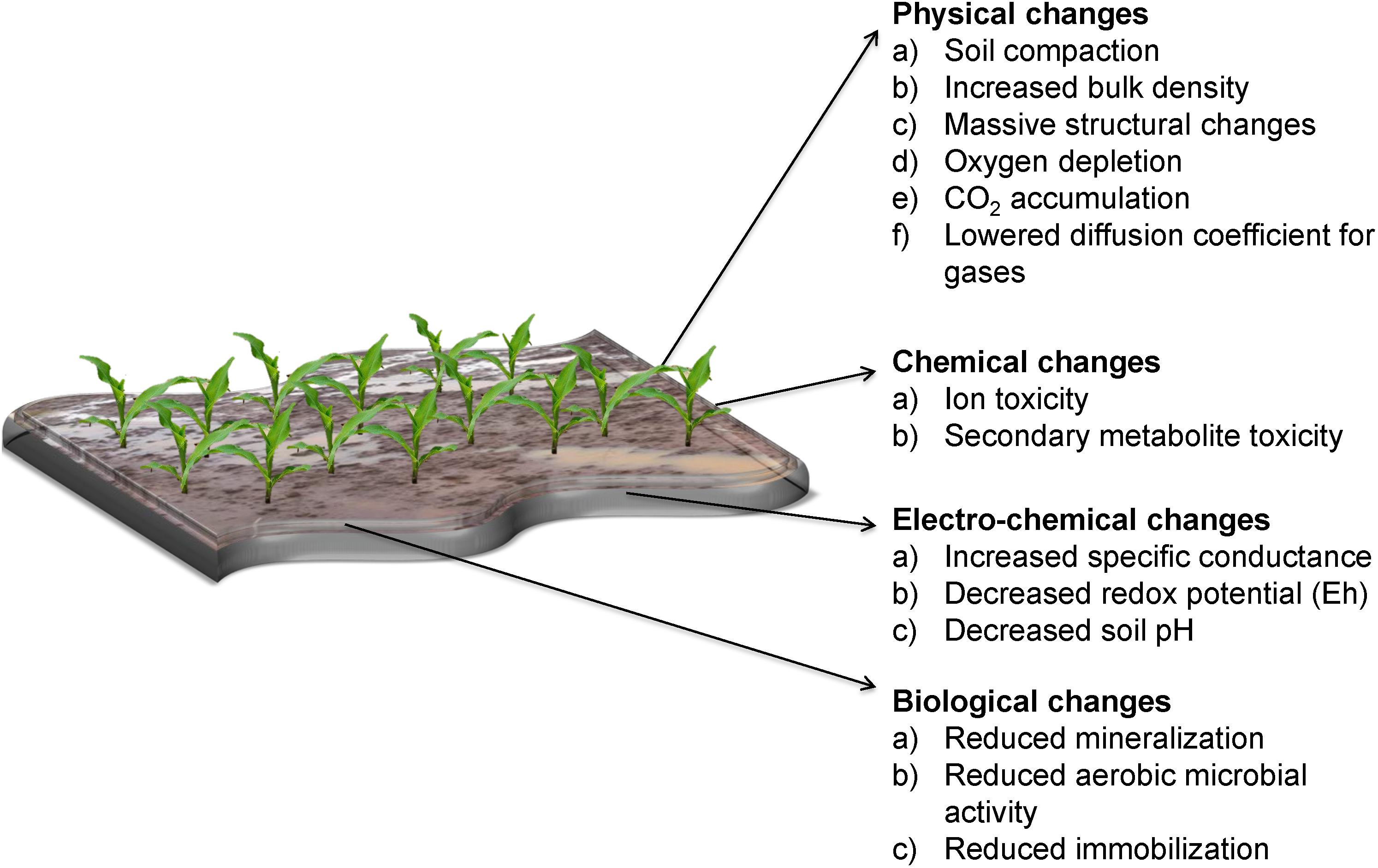 Frontiers | Soil and Crop Management Practices to Minimize