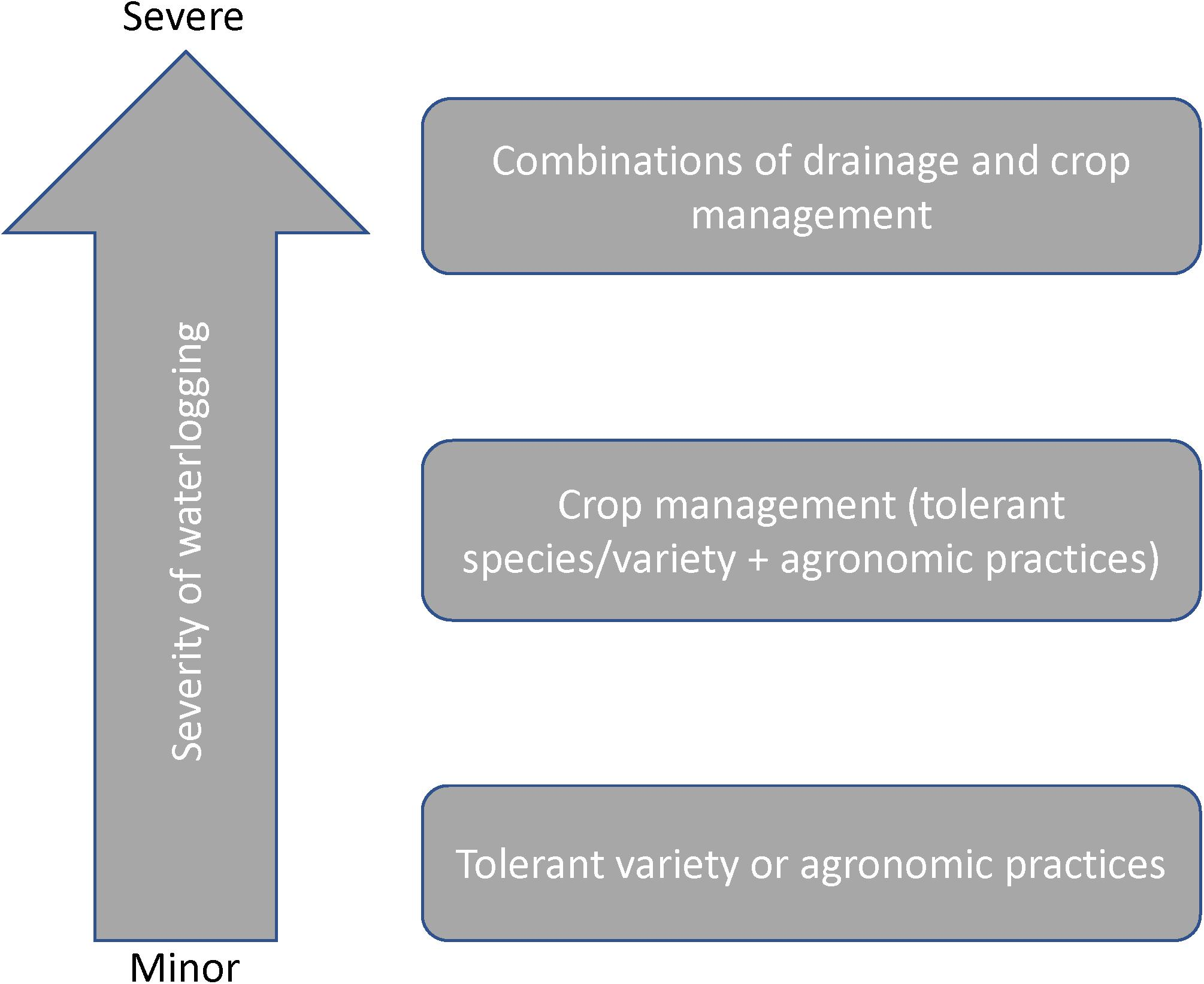Frontiers | Soil and Crop Management Practices to Minimize the