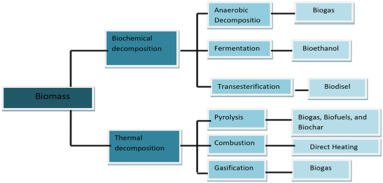 Frontiers | Unlocking the Potential of Biomass Energy in
