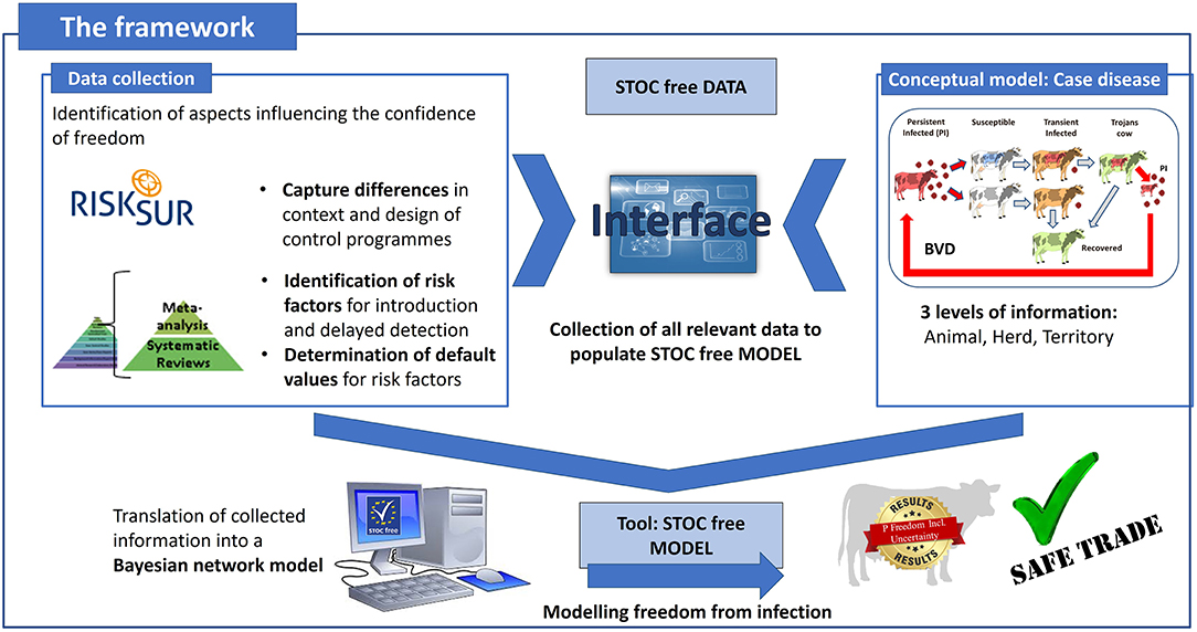 Frontiers | STOC Free: An Innovative Framework to Compare