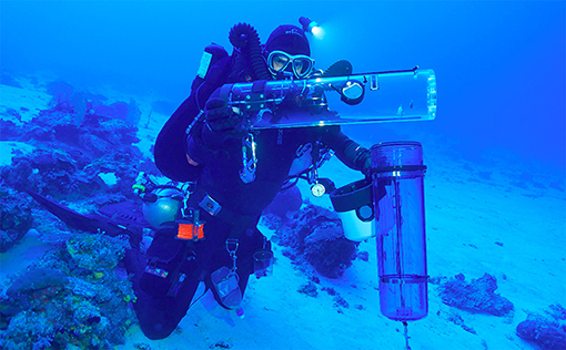 Figure 3 - A rebreather diver places the inner collecting jar (containing fishes) into the SubCAS before ascending from a dive into the twilight zone.